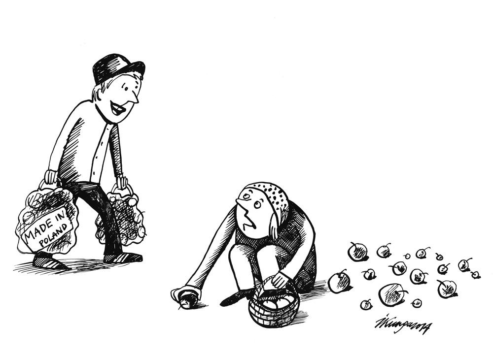 03-09-2014 - Veikalā tik bija Polijas āboli! - Latvijas āboli guļ tik dārzos!