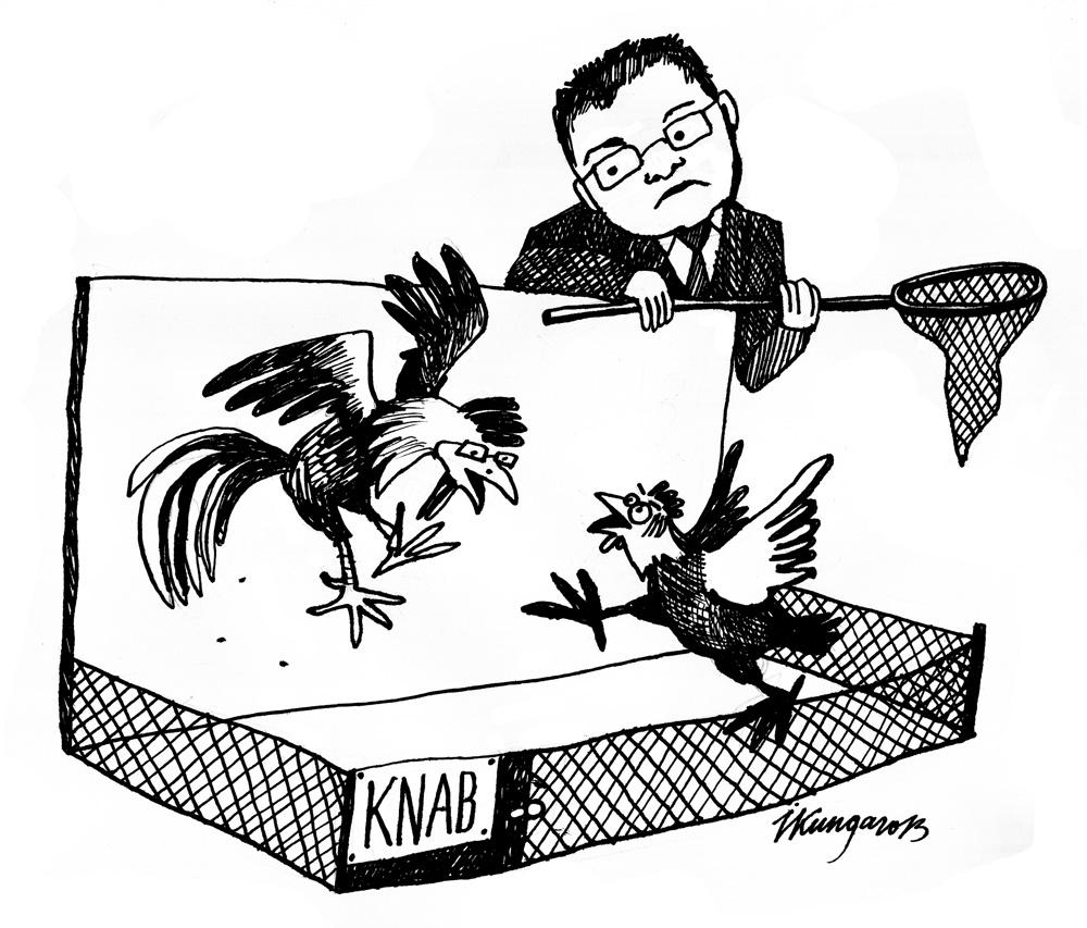 14-08-2013 Dombrovskis: — Nesaprotu, kāpēc viņi knābā viens otru!