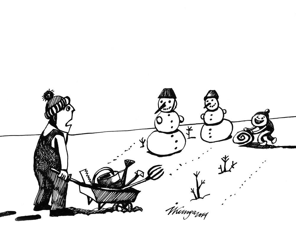 17-03-2014 — Dārzos atkal sākuši augt sniegavīri!