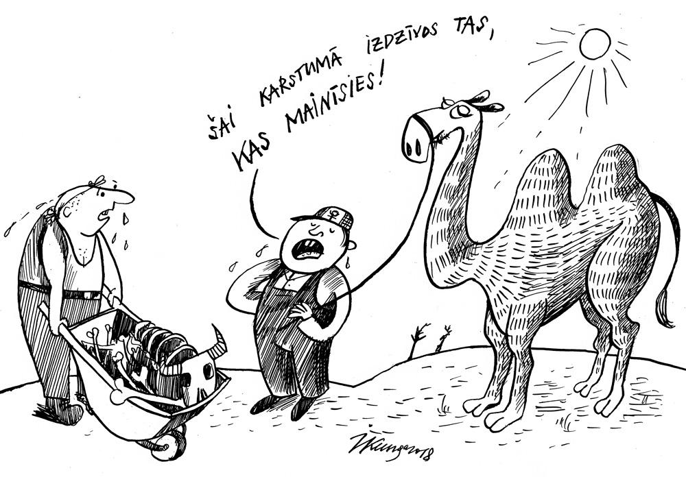 26-07-2018 Latvijas lauki pārvēršas tuksnesī, laikam būs jāpāriet uz kamieļu audzēšanu.