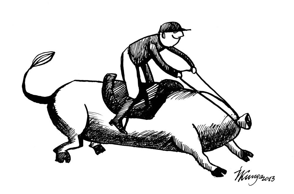 27-02-2013 Nezināmas izcelsmes liellopu gaļas desa.